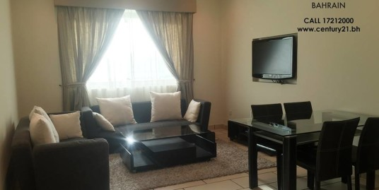 FULLY FURNISHED 2 BR APARTMENT