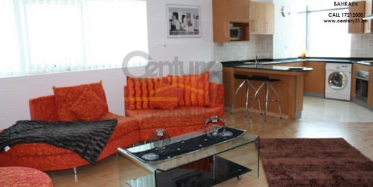 1 bedroom apartment for sale in sanabis FS460