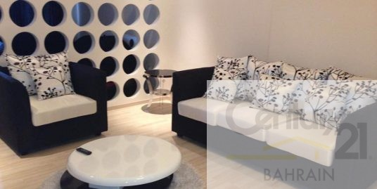 LARGE STUDIO APARTMENT FOR SALE IN BUSAITEEN FS467