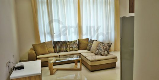 Brand new Fully furnished studio apartment and 2 bedroom apartment for rent in salmaniya